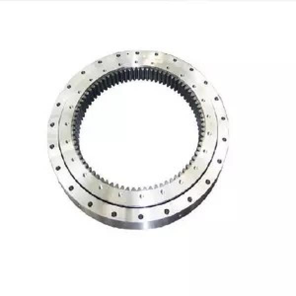 3.74 Inch   95 Millimeter x 6.693 Inch   170 Millimeter x 1.26 Inch   32 Millimeter  NSK NUP219W  Cylindrical Roller Bearings #2 image